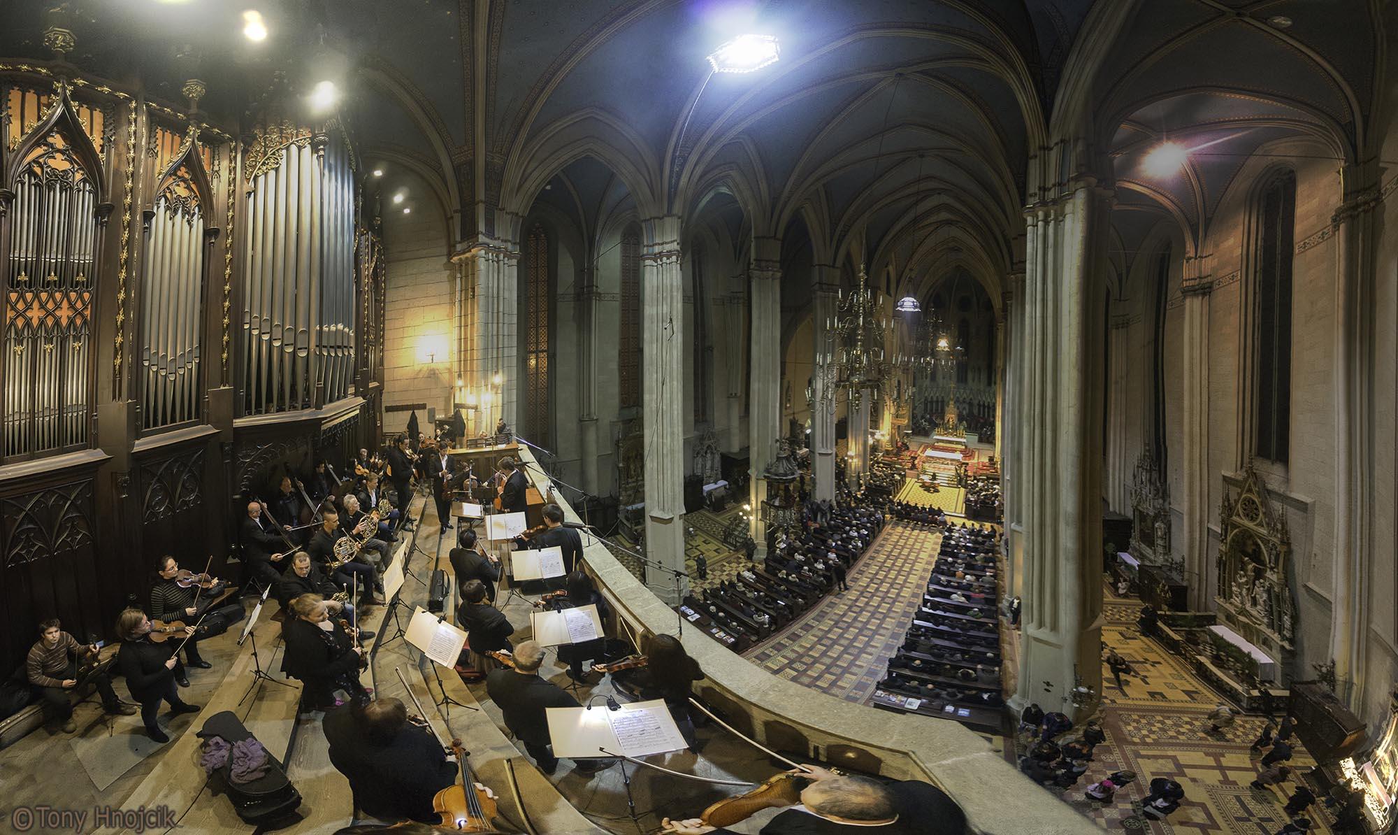 Koncert - Katedrala (16)