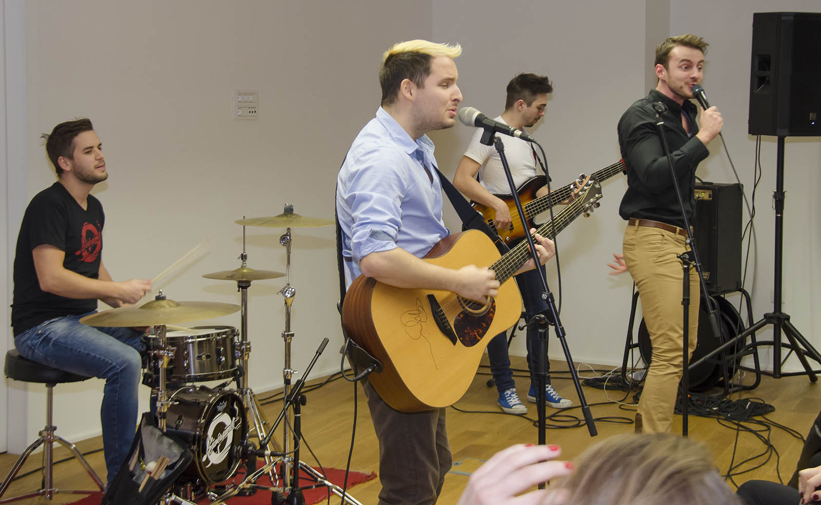 Koncert U Madjarskom Institutu (2)