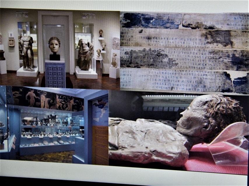 Poljaci Muzeji 3