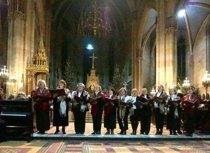 Koncert U Katedrali (19)
