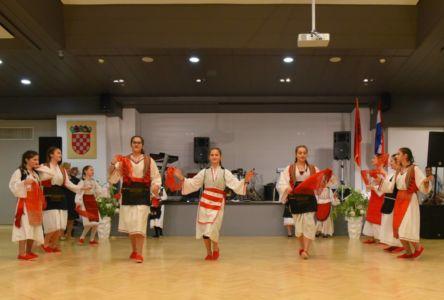 Albanci Dan Zastave 2