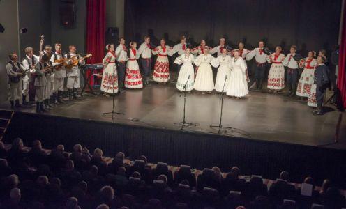 Koncert Povodom 104G R Albanije (12)