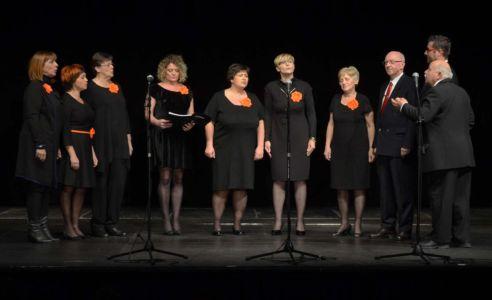Koncert Povodom 104G R Albanije (7)