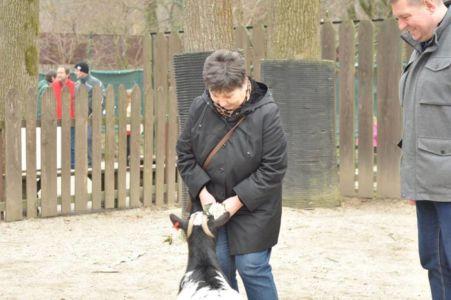 Posjet Zoo Vrtu 12