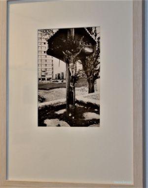Slovenci Fotografije 1